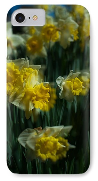 Gold Daffodil IPhone Case by Catherine Lau