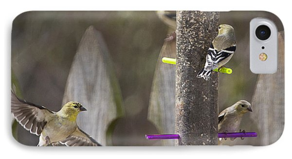 Gold Finch Cleared For Landing Phone Case by Cris Hayes
