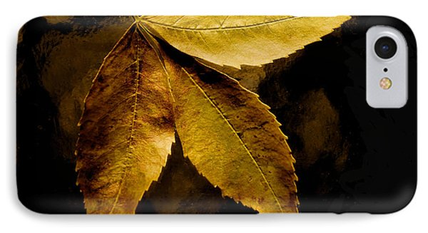 Gold Leaves 2013 IPhone Case