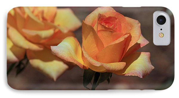 Gold Medal Rose IPhone Case by Terri Mills