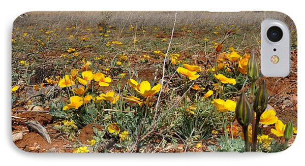 Gold Poppies Near The Chiricahua Mountains IPhone Case by Diane Lent