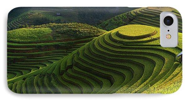 Gold Rice Terrace In Mu Cang Chai,vietnam. IPhone Case
