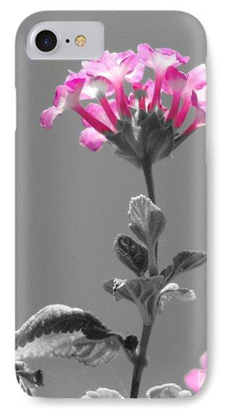 Golda IPhone Case