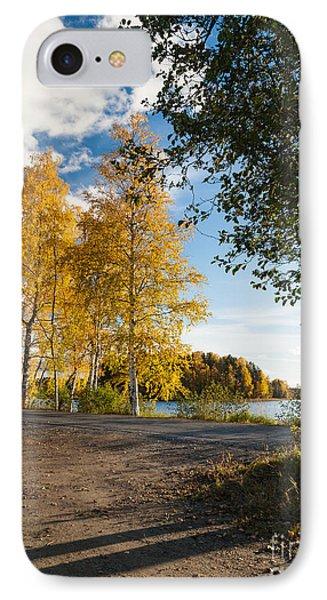 Golden Autumn Birches IPhone Case