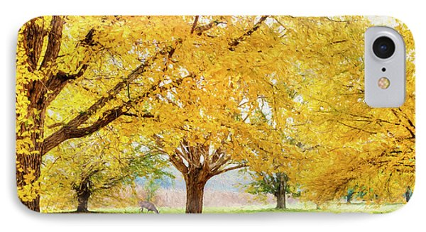 Golden Autumn IPhone Case by Darren Fisher