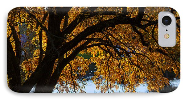 Golden Autumn Leaves Phone Case by Garry Gay