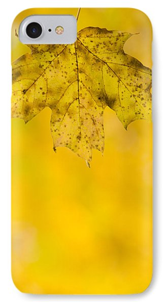IPhone Case featuring the photograph Golden Autumn by Sebastian Musial
