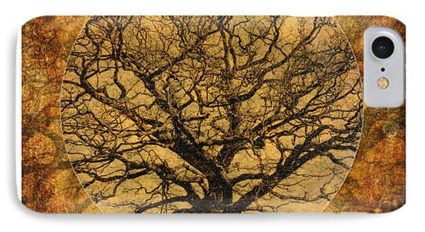 Golden Autumnal Trees IPhone Case by Lenny Carter