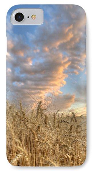 Golden Barley IPhone Case
