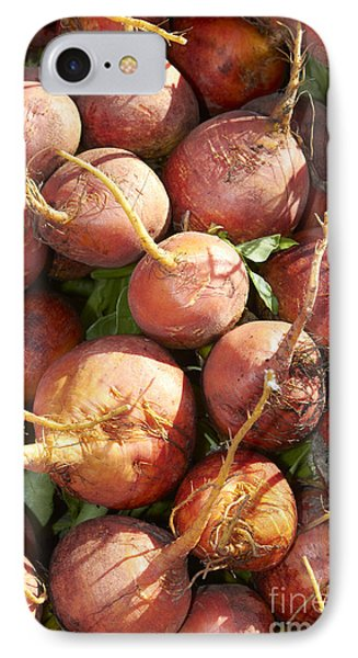 Golden Beets IPhone Case by Tony Cordoza