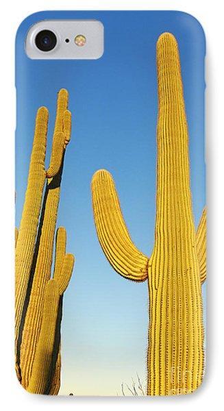 Golden Cactus - Cactus Sunrise At Saguaro National Park In Arizona IPhone Case by Jamie Pham