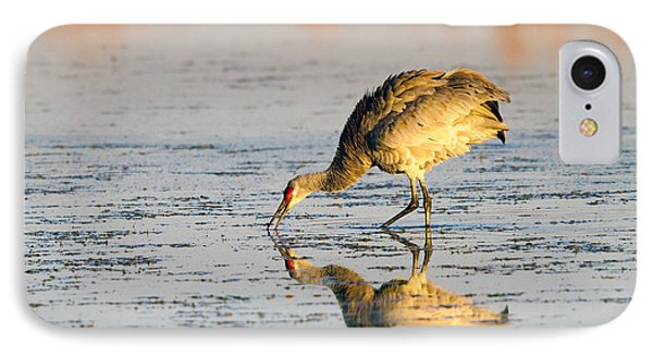 Golden Crane Reflections IPhone Case by Martha Marks