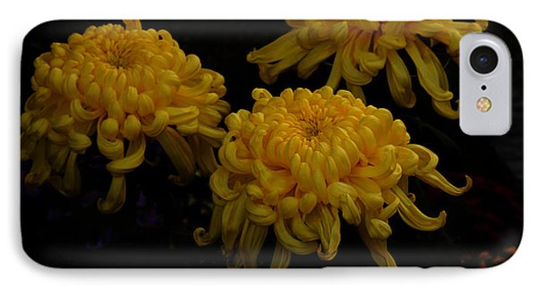 IPhone Case featuring the photograph Golden Crysanthemums by Cassandra Buckley