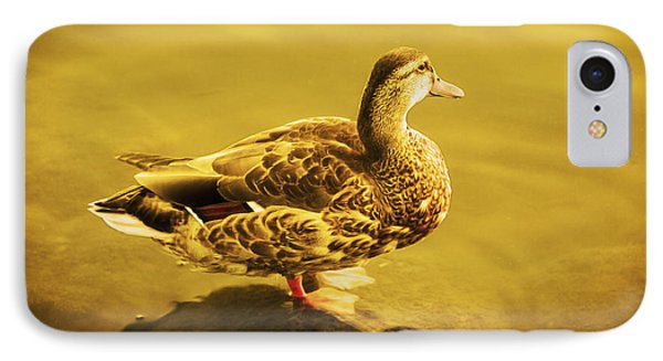 IPhone Case featuring the photograph Golden Duck by Nicola Nobile