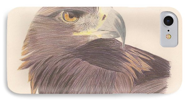 Golden Eagle Study IPhone Case by Sheila Byers