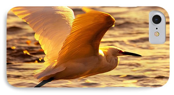 Golden Egret Bird Nature Fine Photography Yellow Orange Print  IPhone Case