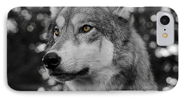 Golden Eyes IPhone Case by Dee Cresswell