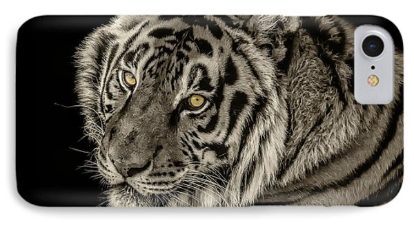 Golden Eyes Of The Tiger IPhone Case by Julie Clements