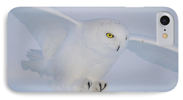 Golden Eyes On The Hunt IPhone Case