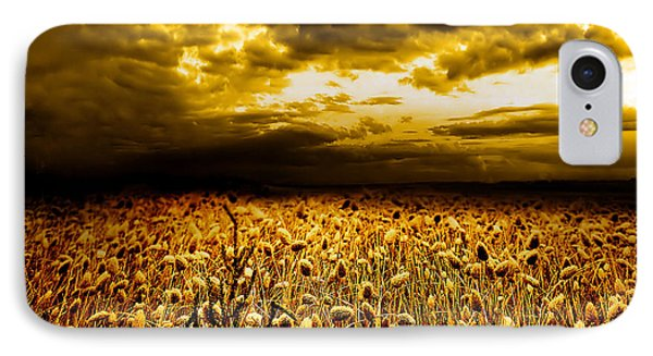 Golden Fields IPhone Case by Jacky Gerritsen