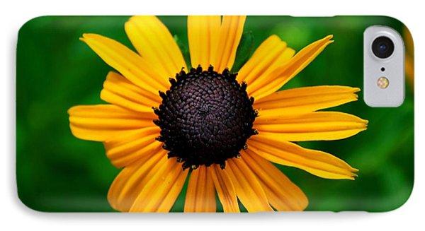 IPhone Case featuring the photograph Golden Flower by Matt Harang