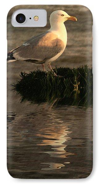 Golden Gull Phone Case by Sharon Lisa Clarke