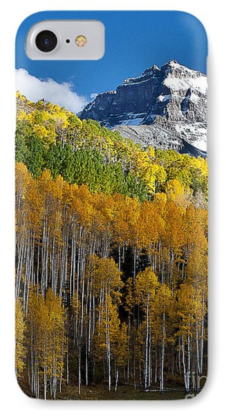 Golden Hillside Phone Case by Steven Reed