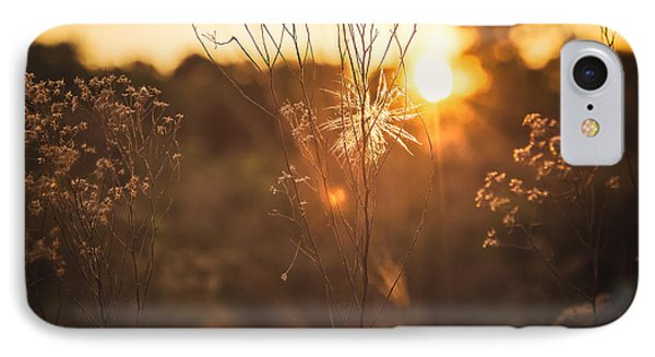 Golden Hour  IPhone Case by Maria Robinson