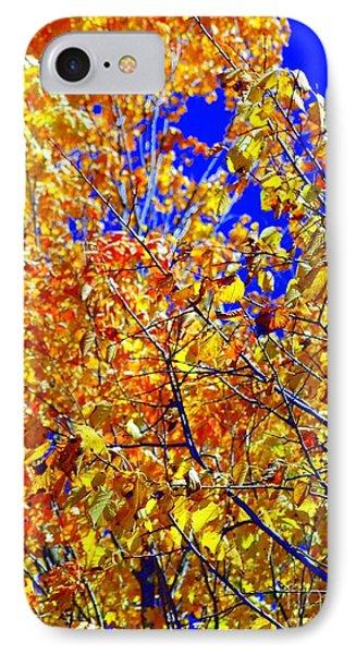 Golden Phone Case by Kathleen Struckle