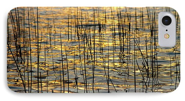 Golden Lake Ripples Phone Case by James BO  Insogna