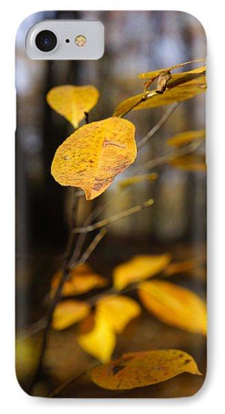 Golden Leaf IPhone Case by Rafael Quirindongo