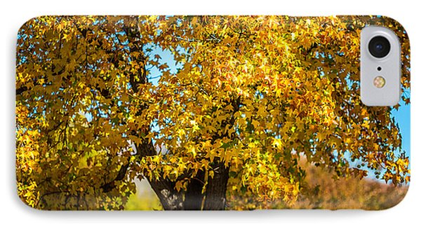 Golden Leaves Of Autumn Phone Case by Mike Lee