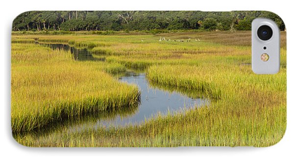 Golden Marsh IPhone Case by Patricia Schaefer