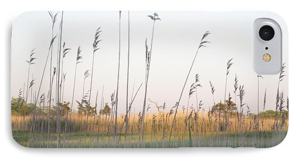 Golden Marshes IPhone Case