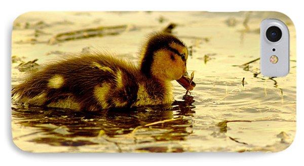 Golden Moment - Duck IPhone Case by Robert Frederick