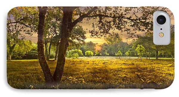 Golden Pastures Phone Case by Debra and Dave Vanderlaan