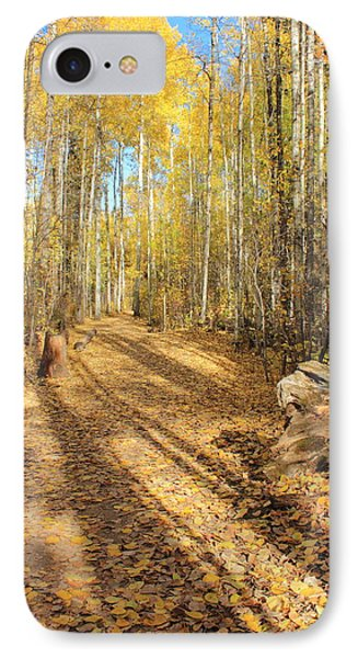 Golden Path IPhone Case by Jim Sauchyn