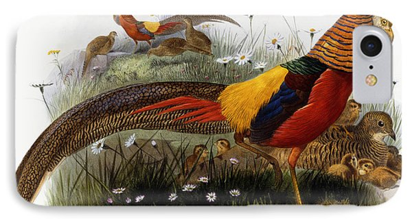 Golden Pheasants IPhone 7 Case by Joseph Wolf