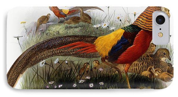 Golden Pheasants IPhone Case by Joseph Wolf