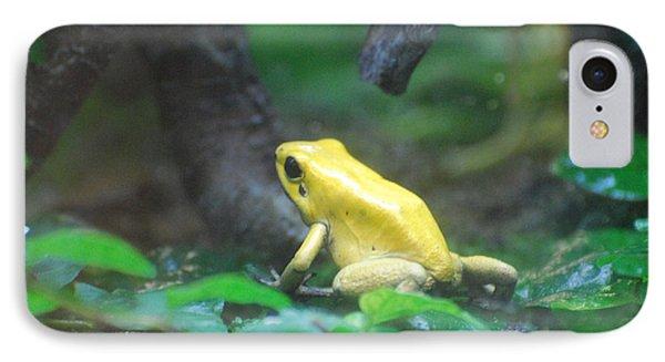 Golden Poison Frog IPhone Case by DejaVu Designs