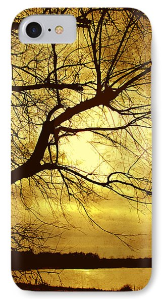 Golden Pond Phone Case by Ann Powell