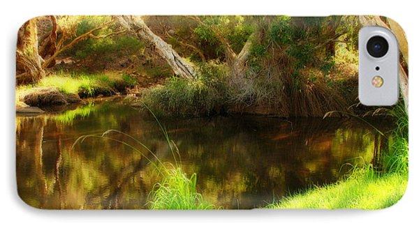 Golden Pond Phone Case by Michelle Wrighton