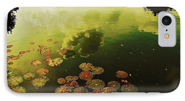 Golden Pond IPhone Case by Yen