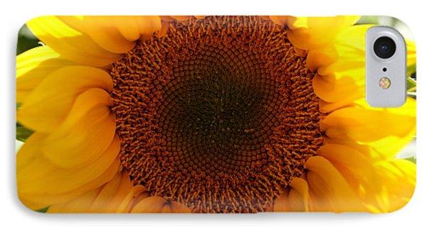 Golden Ratio Sunflower Phone Case by Kerri Mortenson
