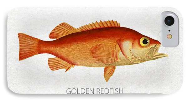 Golden Redfish IPhone Case by Aged Pixel