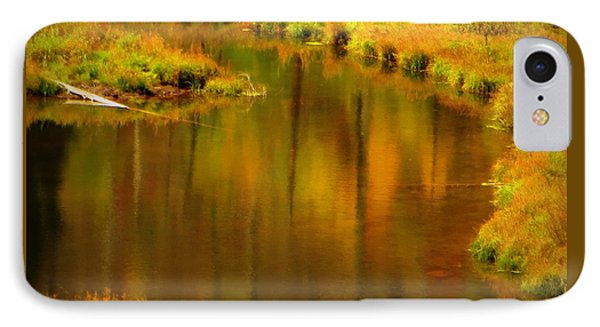 Golden Reflections IPhone 7 Case by Karen Shackles