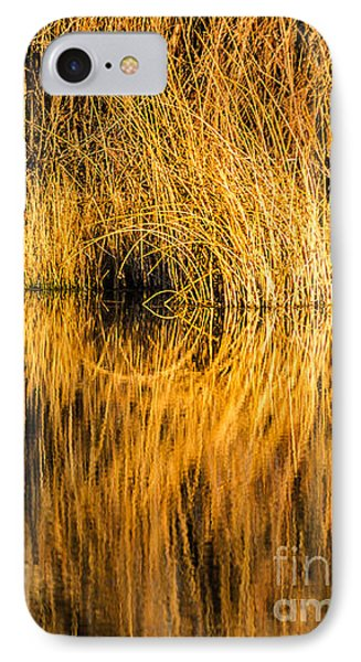 Golden Reflections Phone Case by Sue Smith