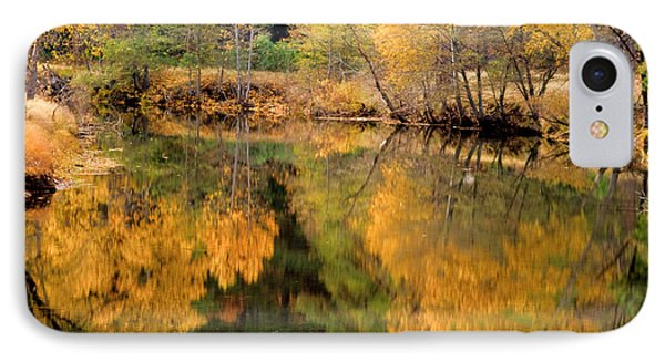 Golden Reflections IPhone Case by Terry Garvin