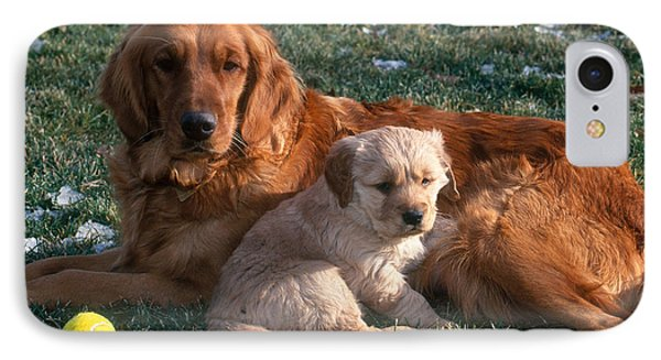 Golden Retriever And Puppy IPhone Case by William H. Mullins