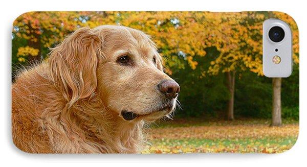 Golden Retriever Dog Autumn Leaves Phone Case by Jennie Marie Schell